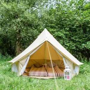 3m bell tent in the woods